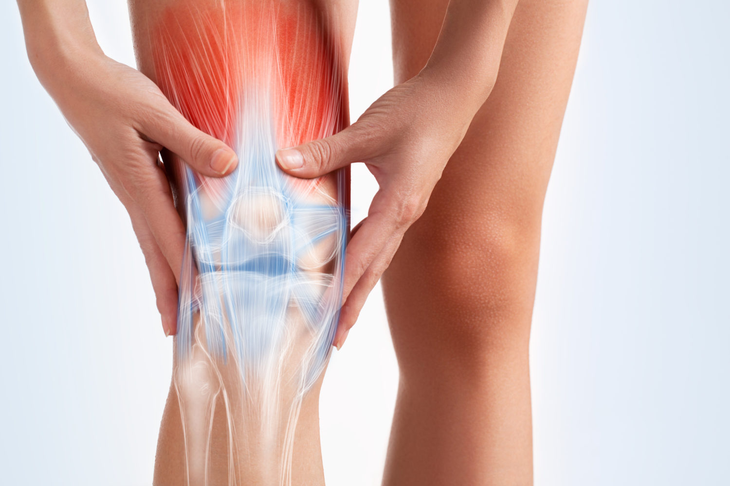 Meniscus Tear Treatment - No Fault Doctor in Forest Hills, NY